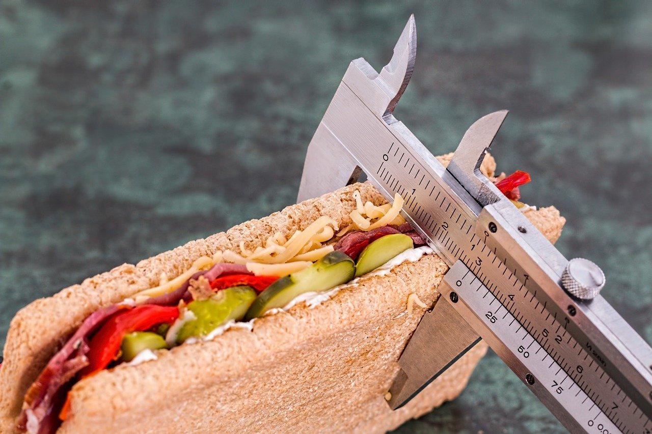 diet, vernier, sandwich-695723.jpg
